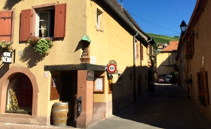 Vineyards are never far away in Alsace - like here, directly behind Turckheim's Grand'Rue